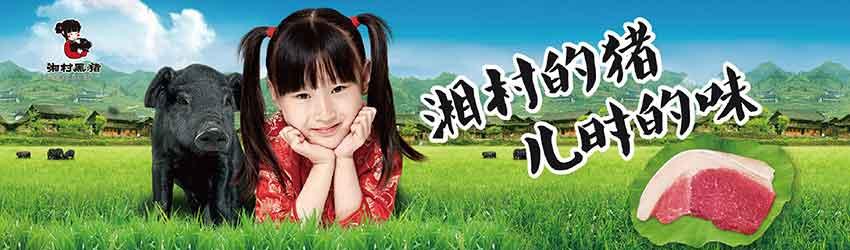湘村黑猪:高端猪肉品牌是如何炼成的